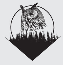 Owl On Forest Silhouette Backg...
