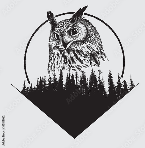 Poster Uilen cartoon owl on forest silhouette background