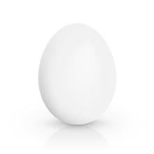 Single White Chicken Egg Isola...