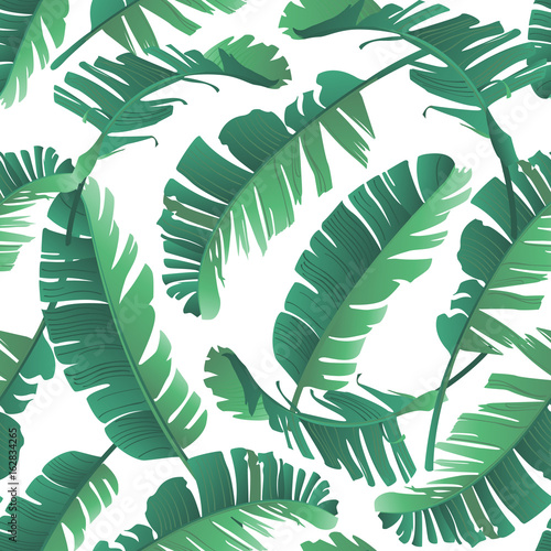 Plissee mit Motiv - Seamless watercolor illustration of tropical leaves, jungle. Pattern with tropic summer background texture, wrapping paper, textile, wallpaper design. Banana palm leaves. (von angelinachirkova)