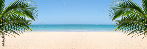 Poster Tropical plage Sunny tropical beach panorama with copy space between palm trees
