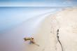 Morze Bałtyckie pusta plaża bez ludzi