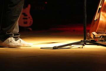 Fototapeta na wymiar concerto