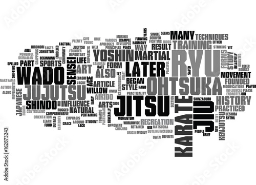 A BRIEF HISTORY OF WADO RYU KARATE PART I OF III TEXT WORD CLOUD CONCEPT Canvas Print