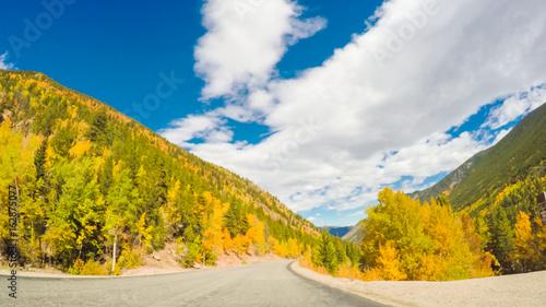 Deurstickers Herfst Alpine forest