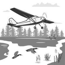 Ecological Journey On An Airplane. At The Bottom Of The Forest, River, Reeds And Ducks Fly.