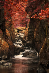 Panel Szklany Wodospad Stunning ethereal landscape of deep sided gorge with rock walls and stream flowing through surreal deep red foliage