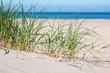 dünenlandschaft strand