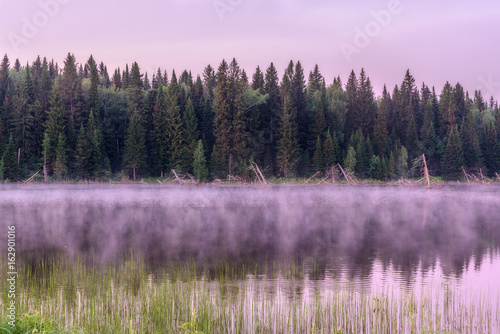 Spoed Foto op Canvas Lavendel lake dawn pink fog forest