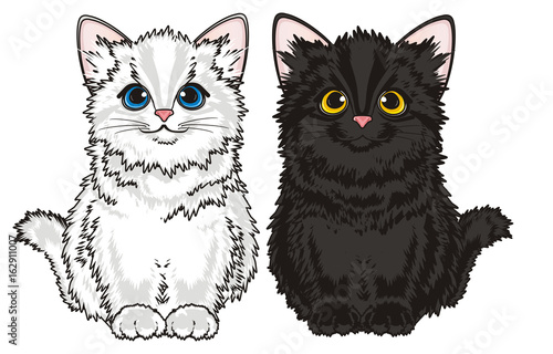 Photo sur Toile Croquis dessinés à la main des animaux Kitten, cat, animal, friend, pet, small, cartoon, meow, little, furry, toy, black, two, pair, couple, different, sit,