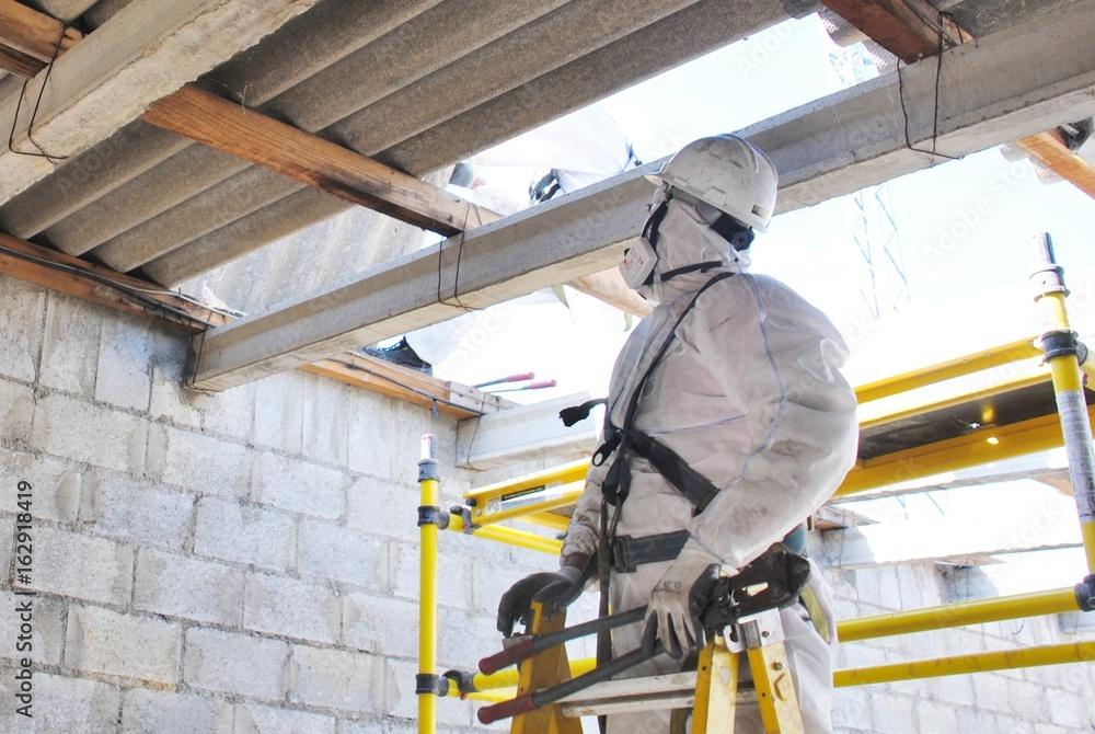 Fototapeta Desmontando tejado de fibrocemento con amianto en Estación Eléctrica