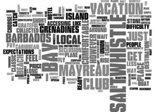 WHY CHOOSE THE SALTWHISTLE BAY CLUB ON MAYREAU IN THE GRENADINES TEXT WORD CLOUD CONCEPT