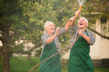 People Having Fun In Garden. W...
