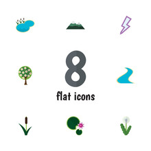 Flat Icon Ecology Set Of Tributary, Tree, Cattail And Other Vector Objects. Also Includes Reed, Water, Lily Elements.