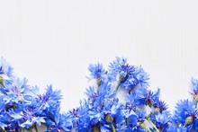 Blue Cornflowers Over White