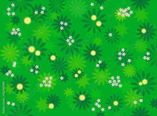 Valokuva  花咲く野原