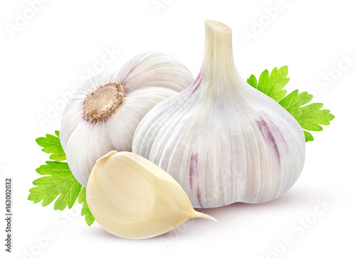 Garlic with parsley on white background