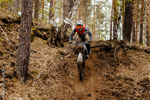 Fotomural  athlete bike enduro in forest trail downhill competition motocross