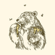 The Bear Eats Honey Paw. The Bear Eats Honey Paw. Vintage Style. Vector Illustration.