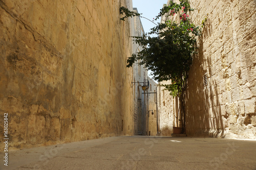 Photo Stands Narrow alley A typical street in Mdina, Malta also known as