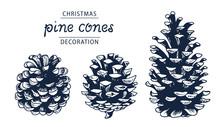 Pinecones Vector Set, Botanical Hand Drawn Illustration, Isolated On White Background