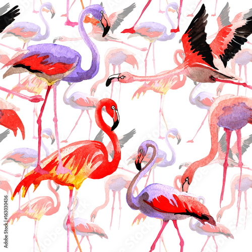 Canvas Prints Flamingo Bird Sky bird flamingo pattern in a wildlife by watercolor style. Wild freedom, bird with a flying wings. Aquarelle bird for background, texture, pattern, frame, border or tattoo.