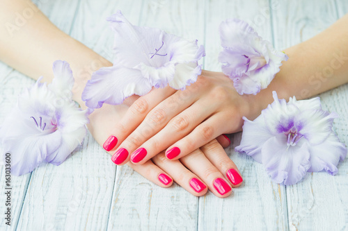Fotografie, Obraz  Beautiful woman hands with pink manicure and sword lily flowers, spa beauty trea