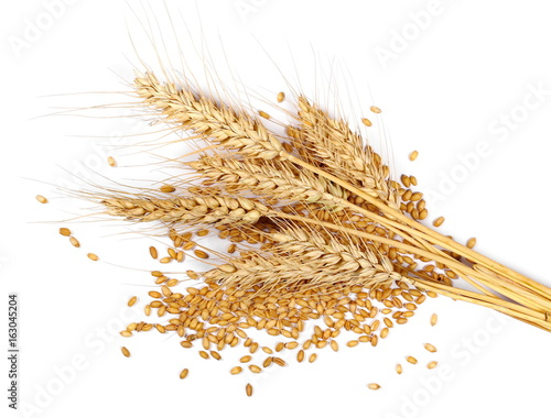 Ears of wheat and grain isolated on white background, top view