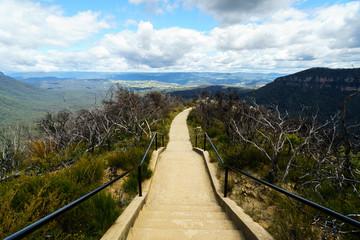 Fototapeta samoprzylepna Blue Mountain Australia