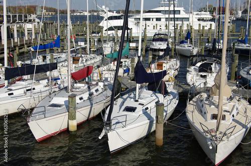 Yacht Basin: Competition sailboats at a Maryland marina