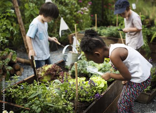 Valokuva Kid in a garden experience and idea