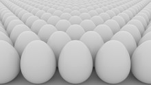Eggs. Order, Start, Equality O...