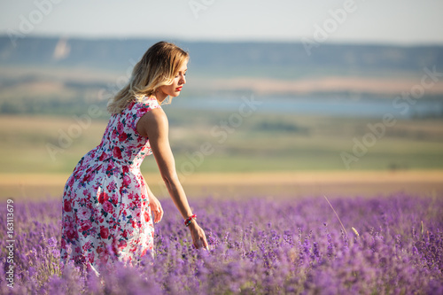 Poster Prune Beautiful girl is walking on the lavender field