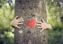 Tree Hugging, Love Nature