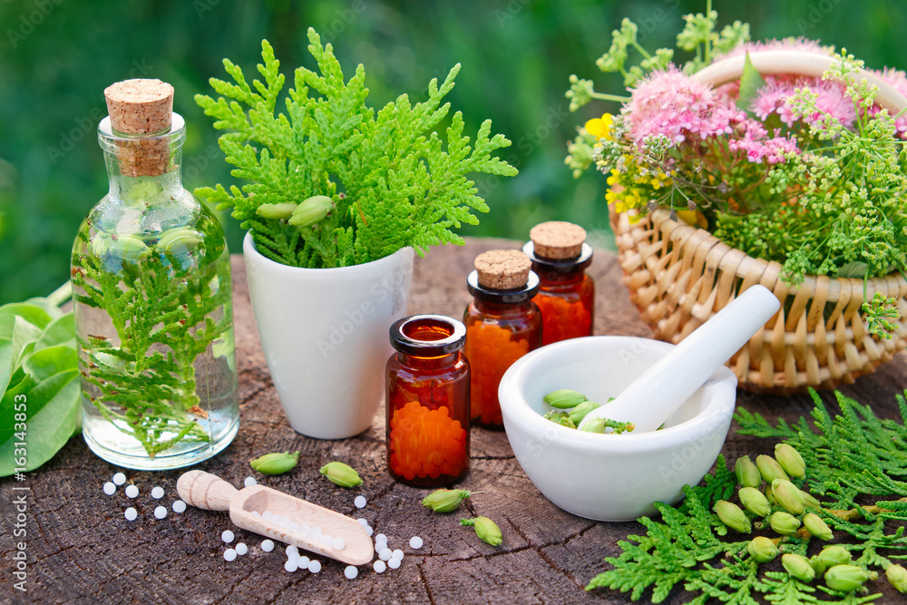 Fototapety, obrazy: Bottles of homeopathic globules. Thuja, Plantain, healthy infusion, mortar and basket of herbs. Homeopathy medicine.