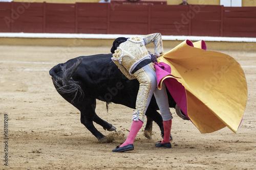 Door stickers Bullfighting Torero y toro en la plaza. Tarde de toros. Fiesta Nacional.