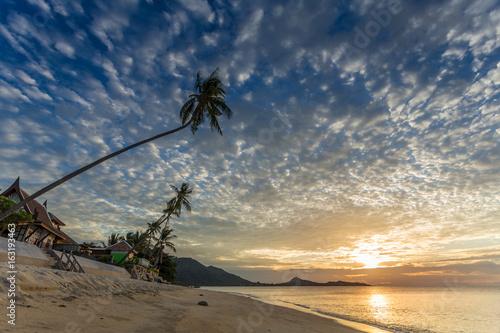 Foto auf AluDibond Drachen sonnenaufgang an der Lamai beach