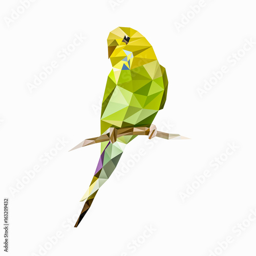 Lovebirds Posters & Wall Art Prints | Buy Online at EuroPosters