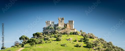 Obraz na plátne Castle on a Hill