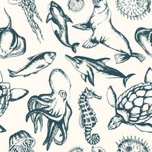 Sea Creatures - Hand Drawn Sea...