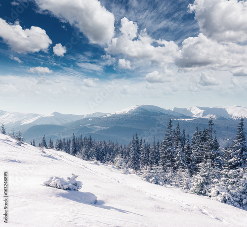 Door stickers Blue jeans Majestic winter landscape