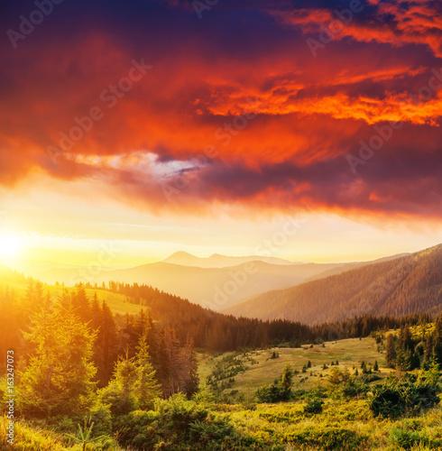 Location place Carpathian national park, Ukraine, Europe. #163247073