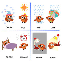 Opposite Word Vector Background For Preschool (cold Hot Wet Dry Sleep Awake Dark Light)