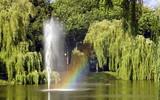 Fototapeta Rainbow - fontanna w parku