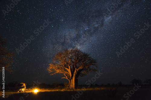 Ingelijste posters Baobab Camping under baobab's and milkyway