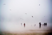 Standing In Fog With Birds In The Sky