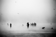 Blurred Fog With Birds In The Sky