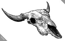Engrave Isolated Cow Skull Han...