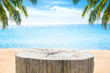Empty wooden stump and beautiful sea blurred background in summer.