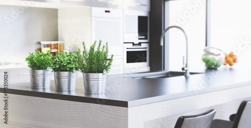 Fotografie, Obraz  Cucina nuova con design moderno, render 3d